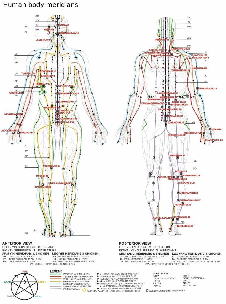 acupuncture-meridians